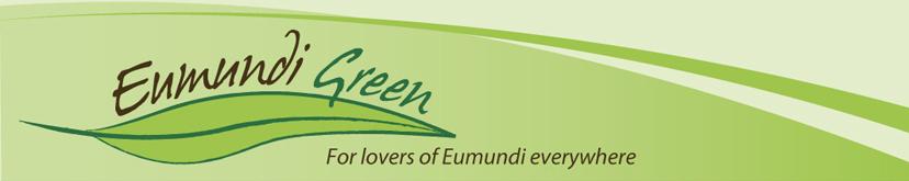 Eumundi Green